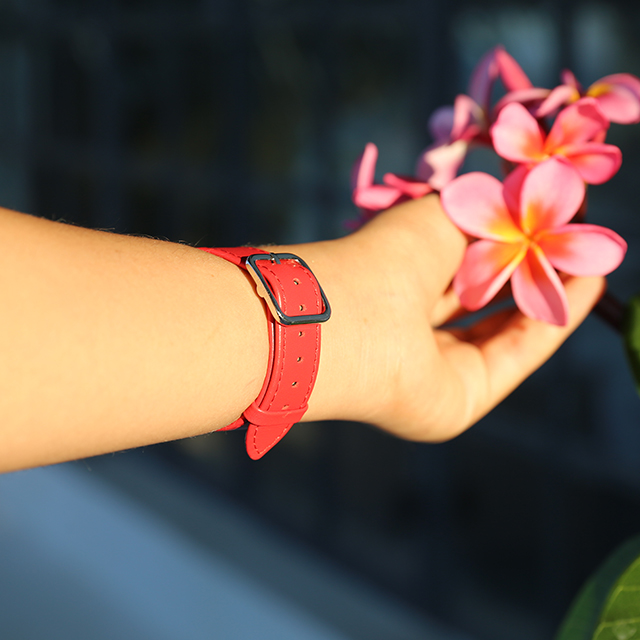 Bracelet Apple Watch 38 mm – elegance - Rouge - Cuir Lisse